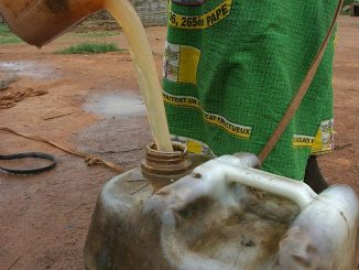 © Pierre Holtz - UNICEF, hdptcar from Bangui, Central African Republic - Unsafe drinking water 03